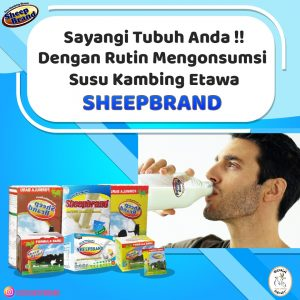 harga susu sheepbrand