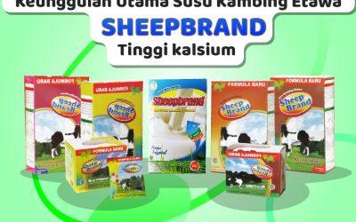 Pentingnya Mengonsumsi Susu Kambing Etawa Sheepbrand