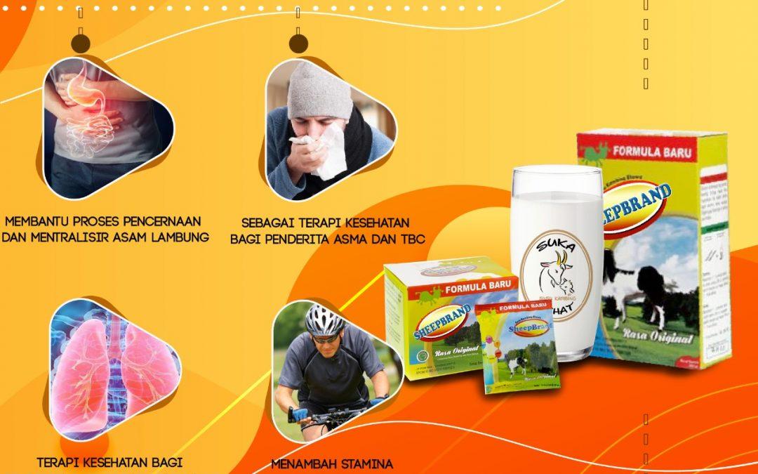 Manfaat Susu Sheepbrand dalam Mengobati Penyakit